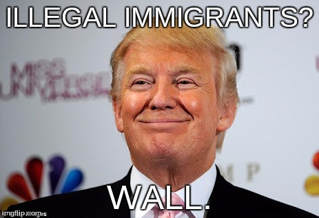 Donald Trumps Answer to Everything is to Build a Border Wall;