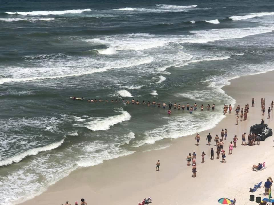 Beachgoers formed a human chain to save a swimmer caught up in a rip current on the beach in Panama City Beach, Florida ;