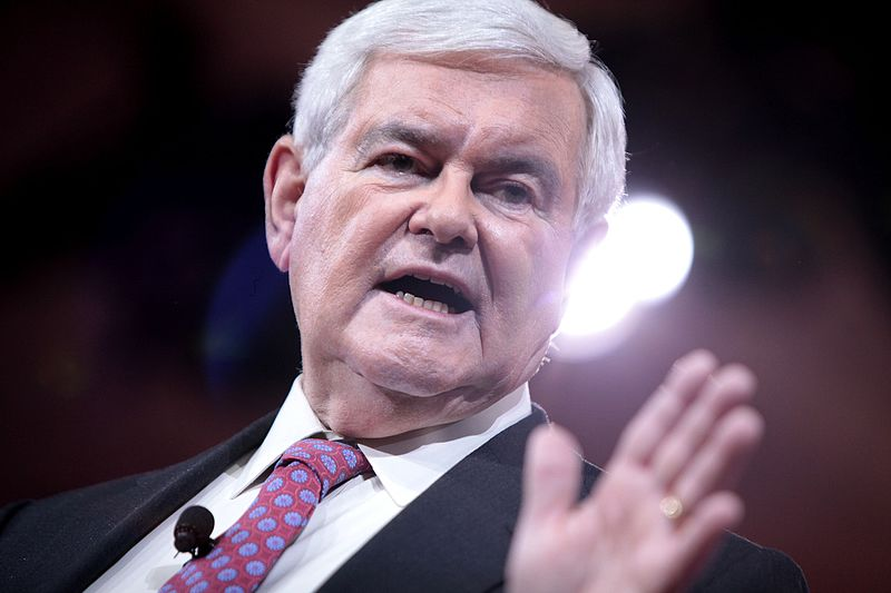 Former Speaker of the House Newt Gingrich;