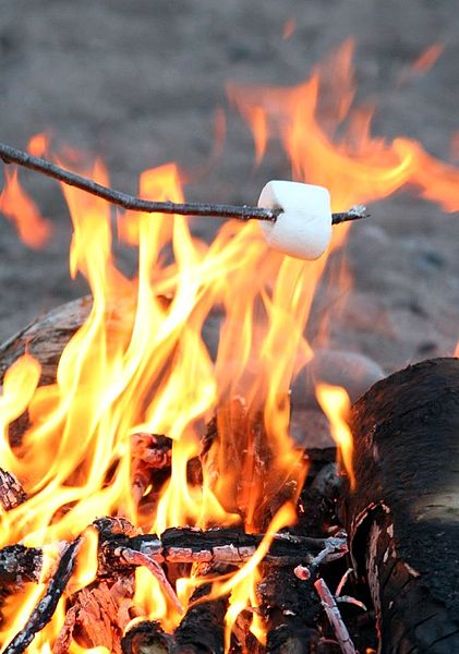 Roasting Marshmallows;