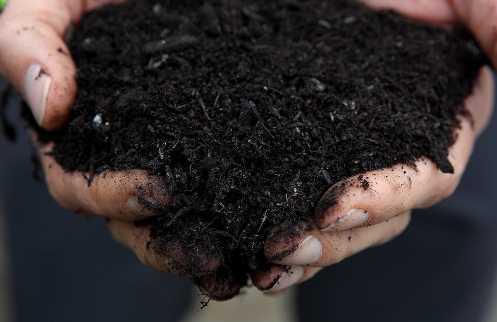 Human Compost Worm Food;